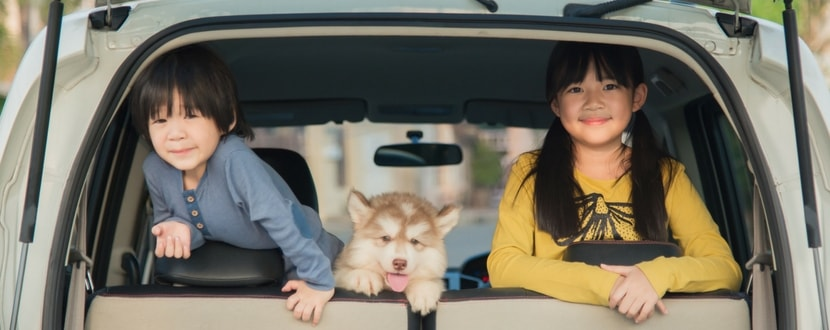 young-kids-in-car-min