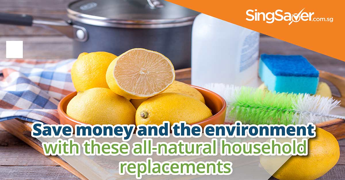 natural household replacements save money