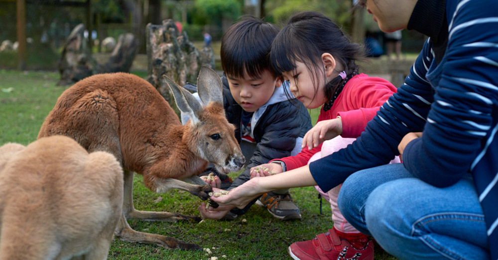 7 Family Holiday Ideas Less Than 7 Hours From Singapore: Perth | SingSaver