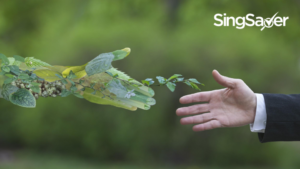 Going Green: What Types Of Ethical Investments Can You Partake In?