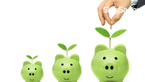 5 Best Sustainable Investments In Singapore