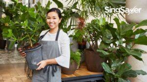 8 Best Plant Nurseries In Singapore For Creating Your Own Indoor Garden